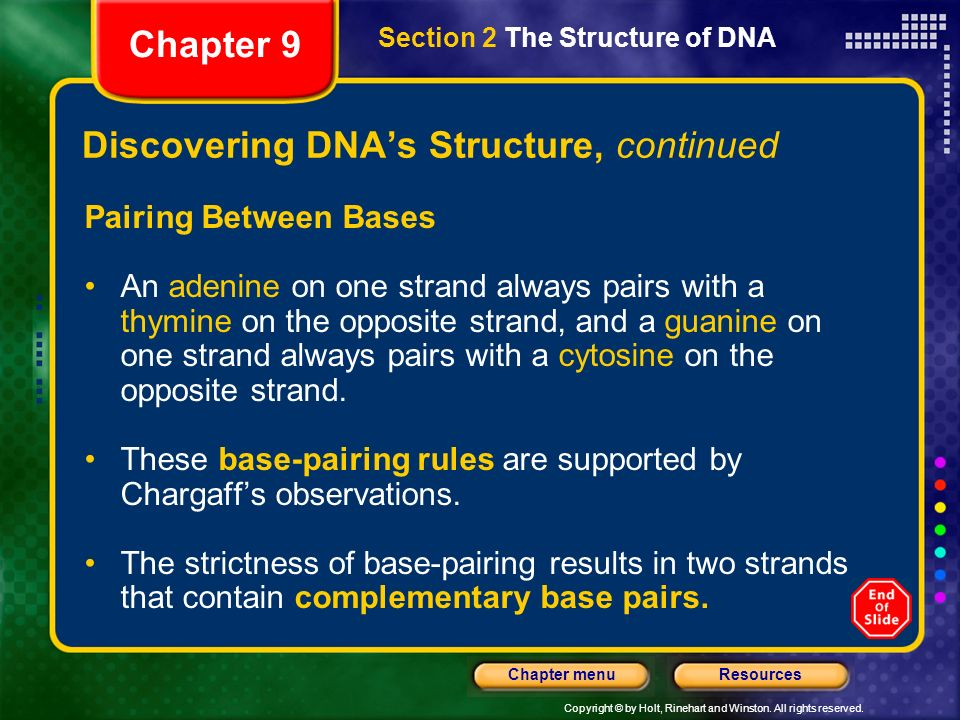 Copyright © by Holt, Rinehart and Winston. All rights reserved. ResourcesChapter menu Discovering DNAs Structure, continued Watson and Cricks DNA Mode