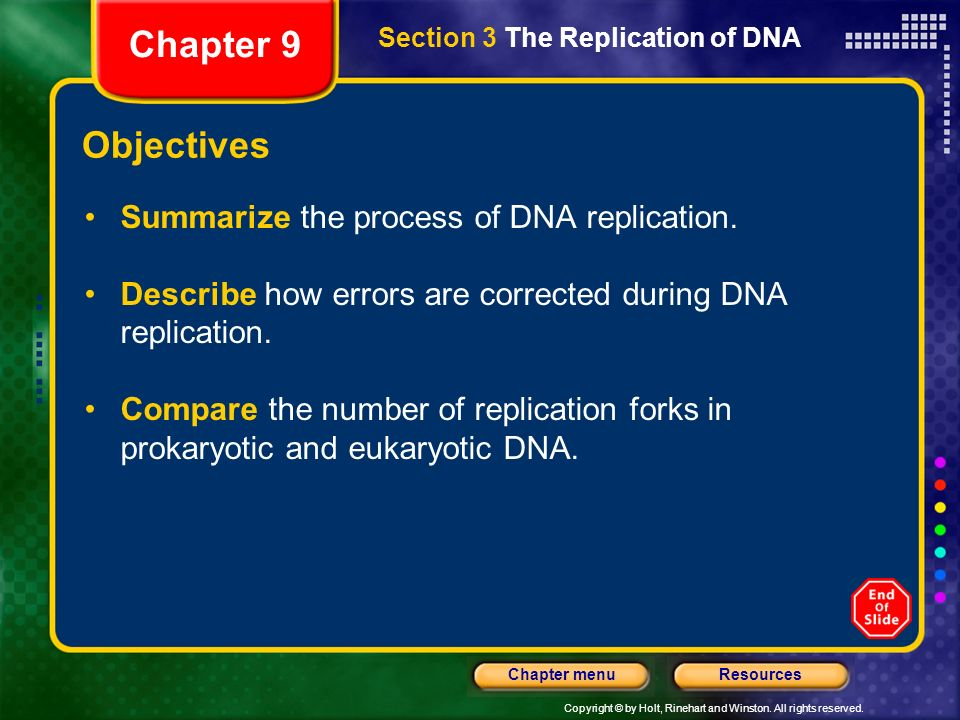 Copyright © by Holt, Rinehart and Winston. All rights reserved. ResourcesChapter menu Complementary Base Pairing Section 2 The Structure of DNA Chapte