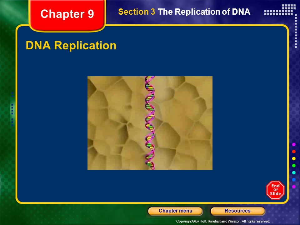 Copyright © by Holt, Rinehart and Winston. All rights reserved. ResourcesChapter menu DNA Replication Section 3 The Replication of DNA Chapter 9