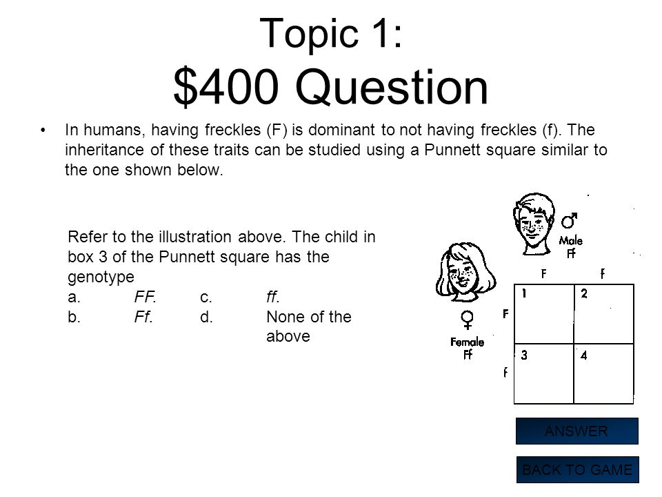 Topic 1: $400 Question In humans, having freckles (F) is dominant to not having freckles (f). The inheritance of these traits can be studied using a P