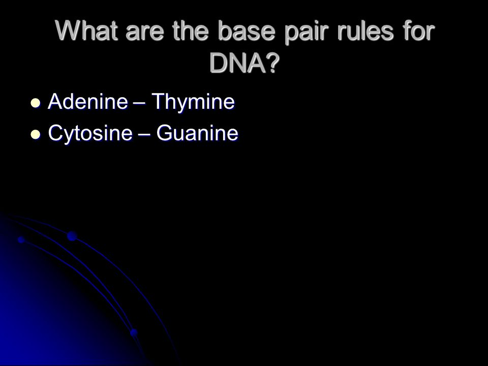 What are the base pair rules for DNA.