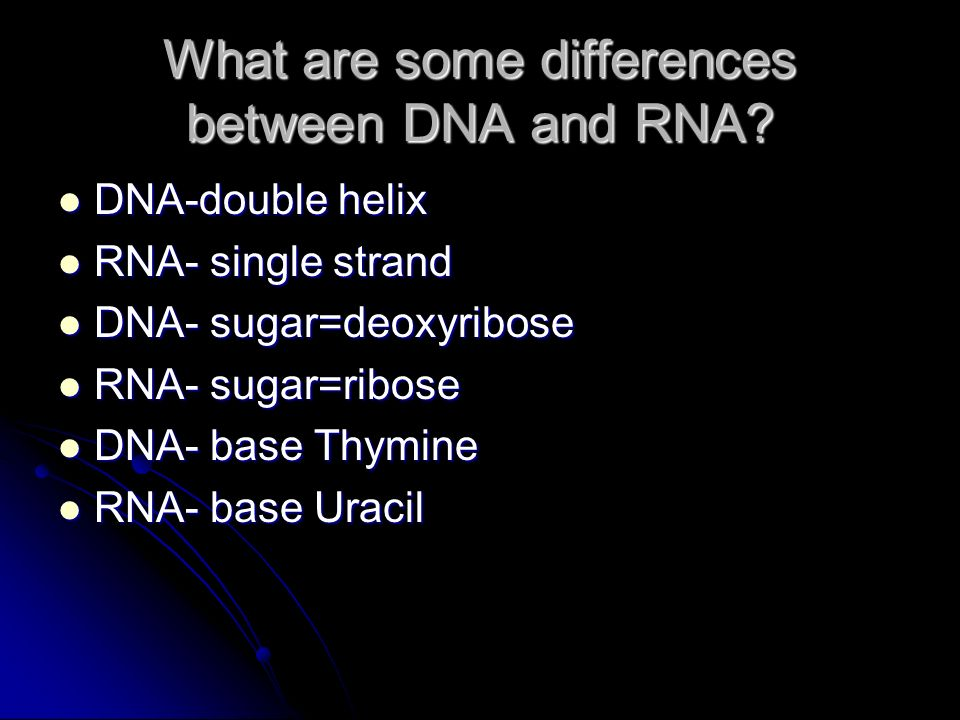 What are some differences between DNA and RNA.