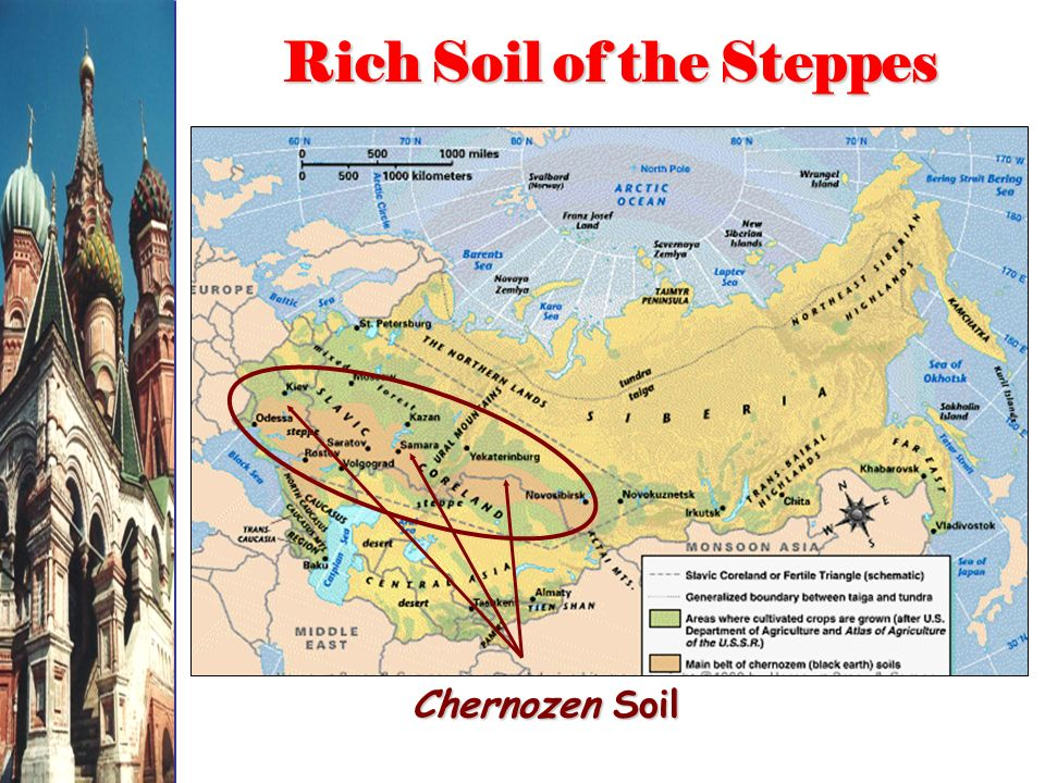 Rich Soil of the Steppes Chernozen Soil