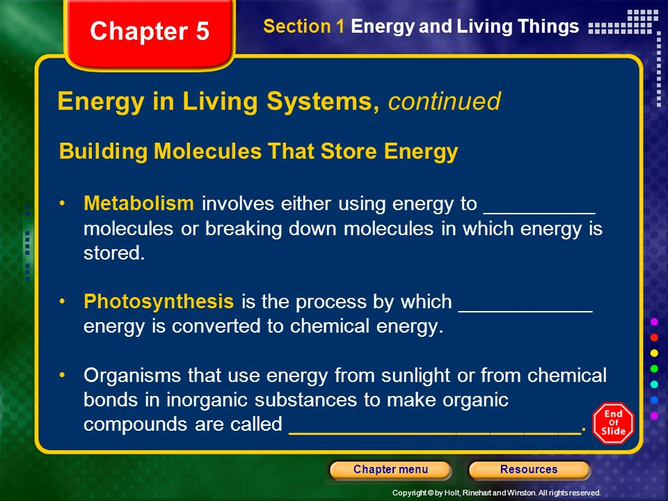 Copyright © by Holt, Rinehart and Winston. All rights reserved. ResourcesChapter menu Energy in Living Systems, continued Building Molecules That Stor
