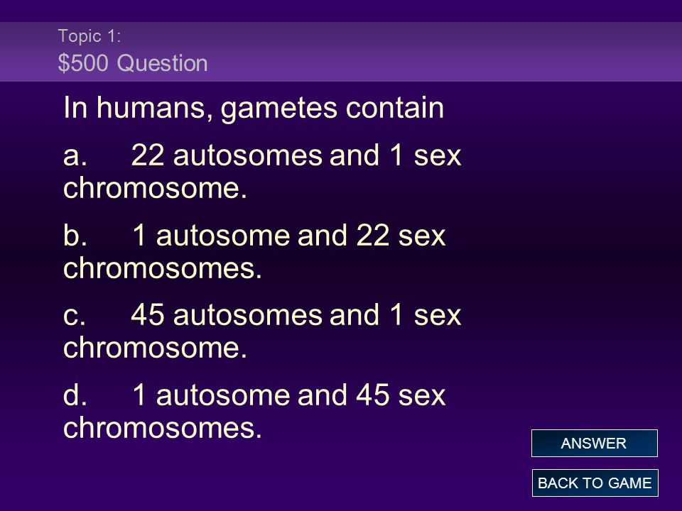 Topic 1: $500 Question In humans, gametes contain a.22 autosomes and 1 sex chromosome. b.1 autosome and 22 sex chromosomes. c.45 autosomes and 1 sex c