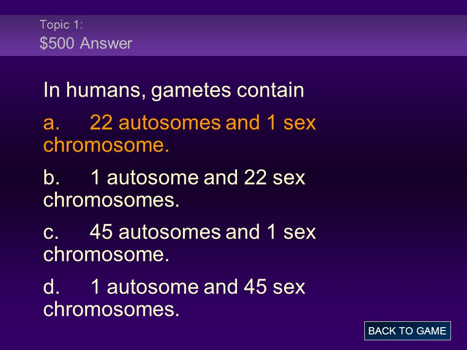Topic 1: $500 Answer In humans, gametes contain a.22 autosomes and 1 sex chromosome. b.1 autosome and 22 sex chromosomes. c.45 autosomes and 1 sex chr