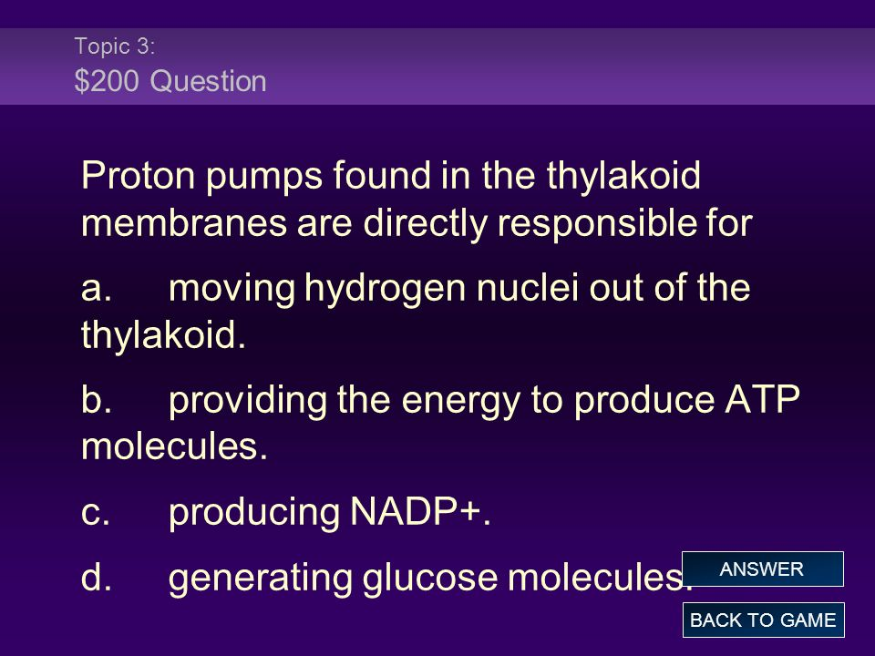 Topic 3: $200 Question Proton pumps found in the thylakoid membranes are directly responsible for a.moving hydrogen nuclei out of the thylakoid. b.pro