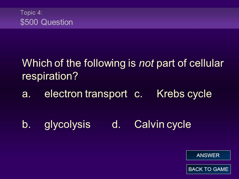 Topic 4: $500 Question Which of the following is not part of cellular respiration? a.electron transportc.Krebs cycle b.glycolysisd.Calvin cycle BACK T