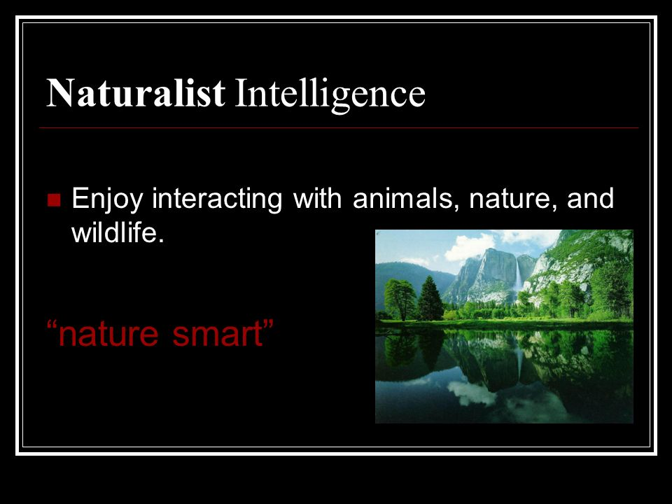 Naturalist Intelligence Enjoy interacting with animals, nature, and wildlife. nature smart