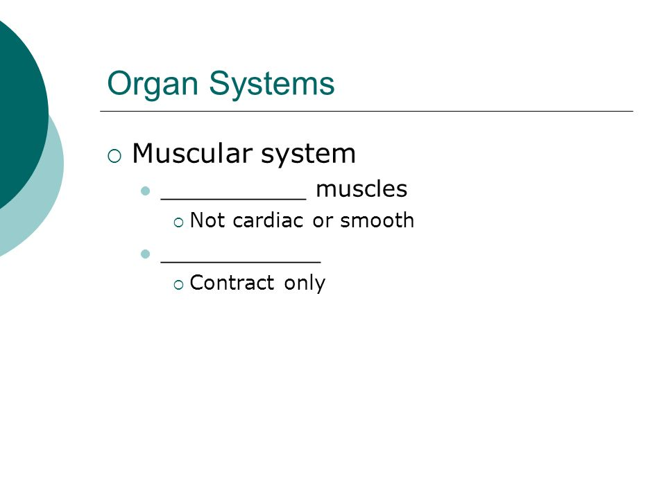 Organ Systems Muscular system __________ muscles Not cardiac or smooth ___________ Contract only