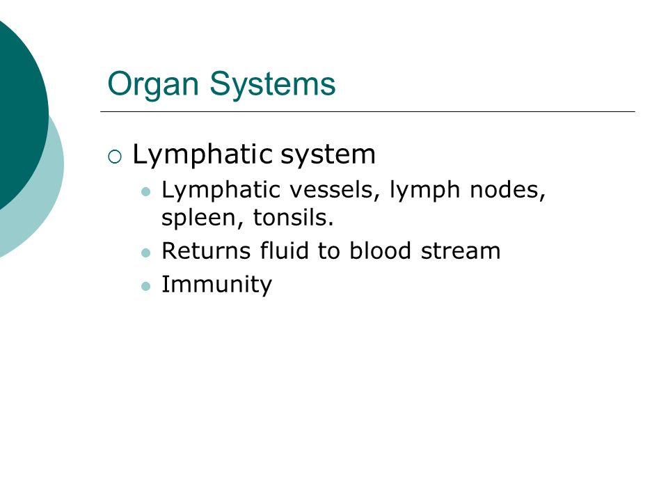 Organ Systems Lymphatic system Lymphatic vessels, lymph nodes, spleen, tonsils. Returns fluid to blood stream Immunity
