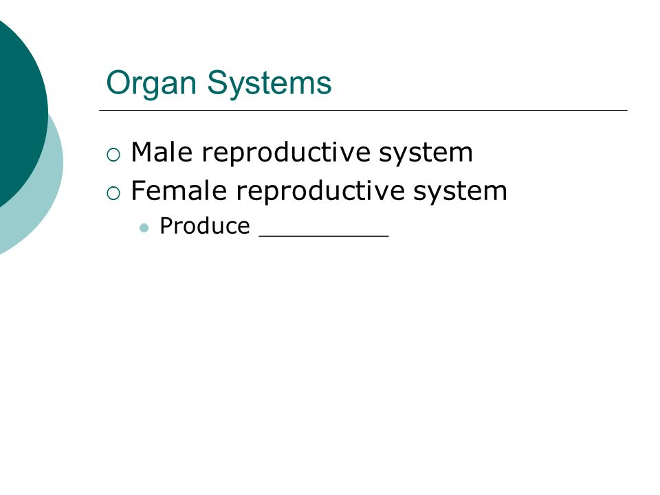 Organ Systems Male reproductive system Female reproductive system Produce _________