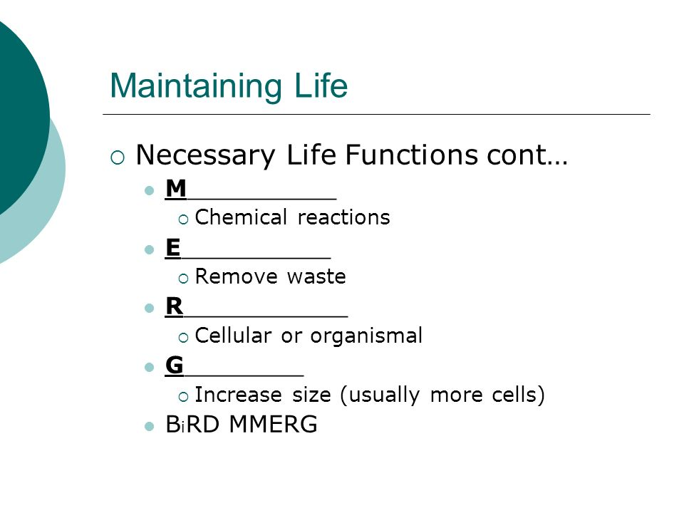 Maintaining Life Necessary Life Functions cont… M__________ Chemical reactions E__________ Remove waste R___________ Cellular or organismal G________