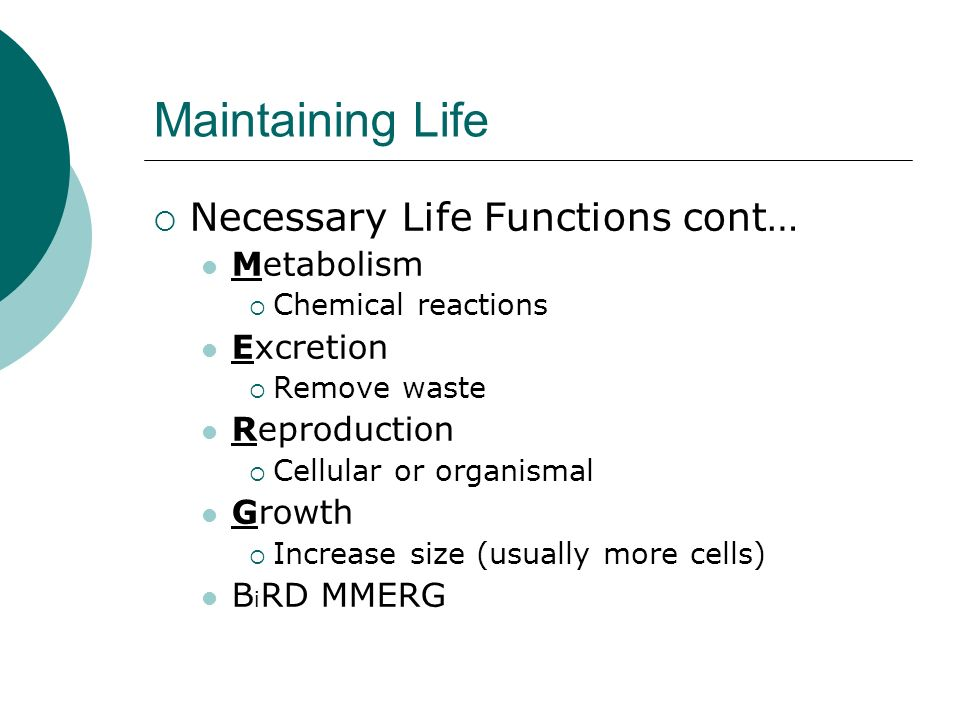 Maintaining Life Necessary Life Functions cont… Metabolism Chemical reactions Excretion Remove waste Reproduction Cellular or organismal Growth Increa