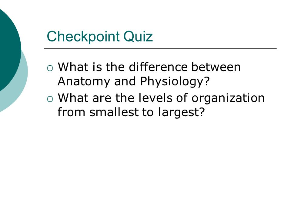 Checkpoint Quiz What is the difference between Anatomy and Physiology? What are the levels of organization from smallest to largest?
