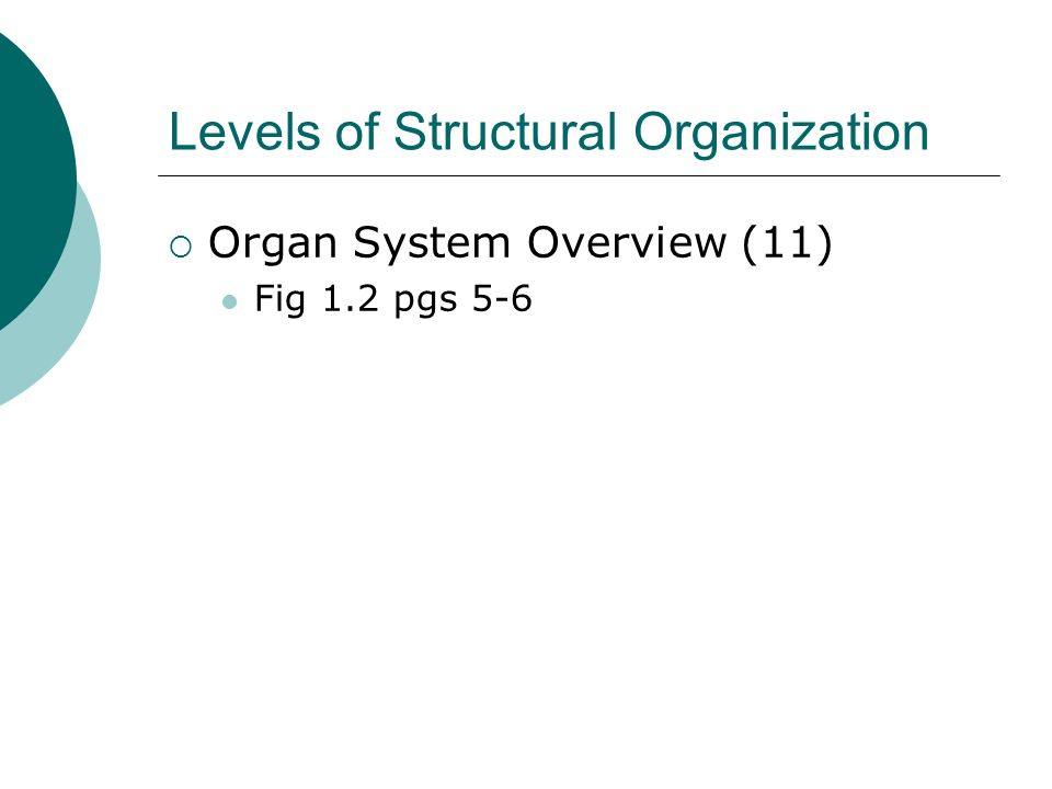 Levels of Structural Organization Organ System Overview (11) Fig 1.2 pgs 5-6