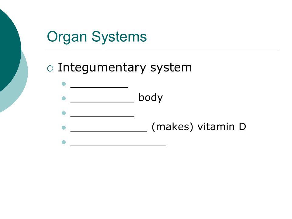 Organ Systems Integumentary system _________ __________ body __________ ____________ (makes) vitamin D _______________