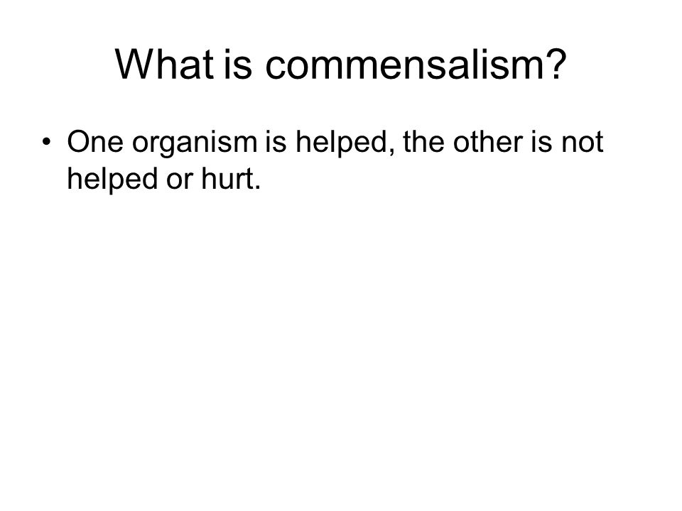 What is commensalism? One organism is helped, the other is not helped or hurt.