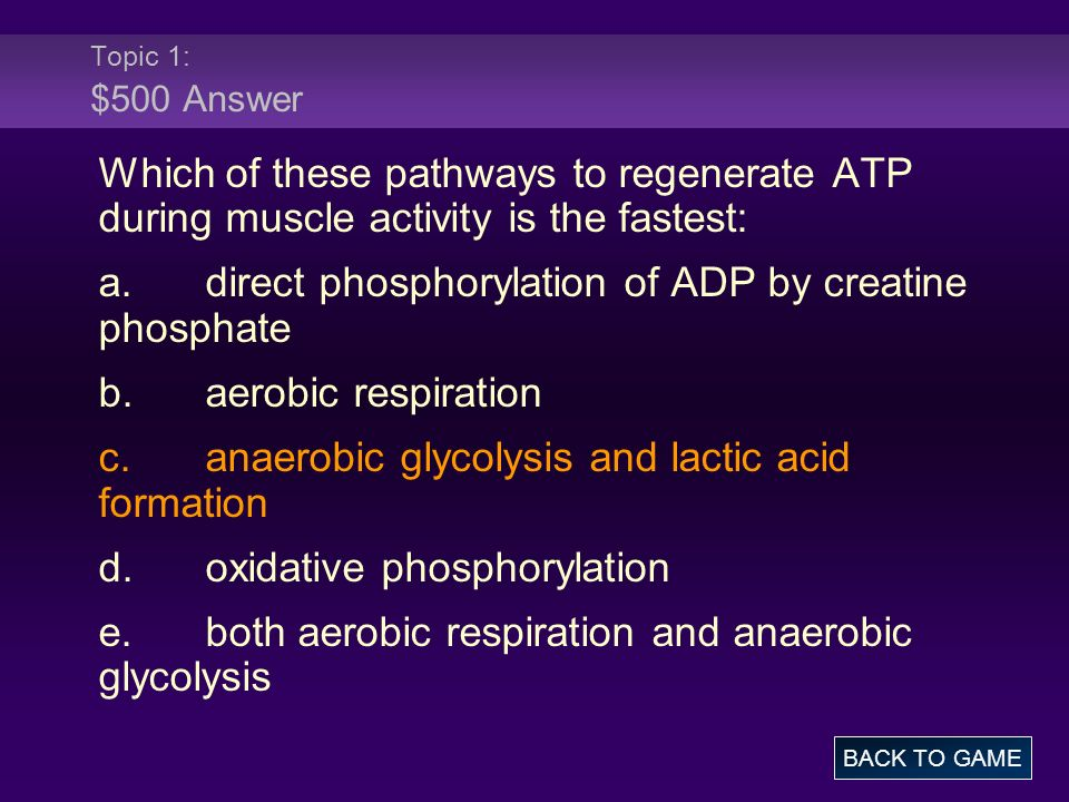 Topic 1: $500 Answer Which of these pathways to regenerate ATP during muscle activity is the fastest: a.direct phosphorylation of ADP by creatine phos