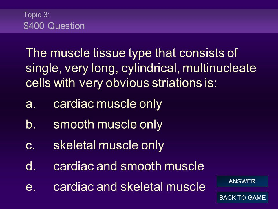 Topic 3: $400 Question The muscle tissue type that consists of single, very long, cylindrical, multinucleate cells with very obvious striations is: a.