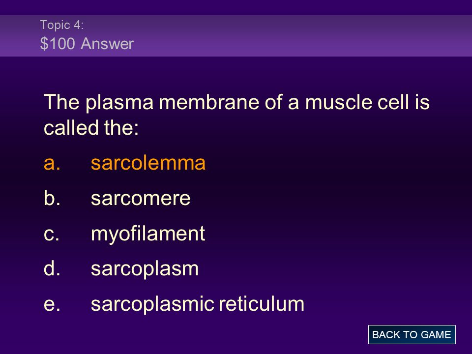 Topic 4: $100 Answer The plasma membrane of a muscle cell is called the: a.sarcolemma b.sarcomere c.myofilament d.sarcoplasm e.sarcoplasmic reticulum