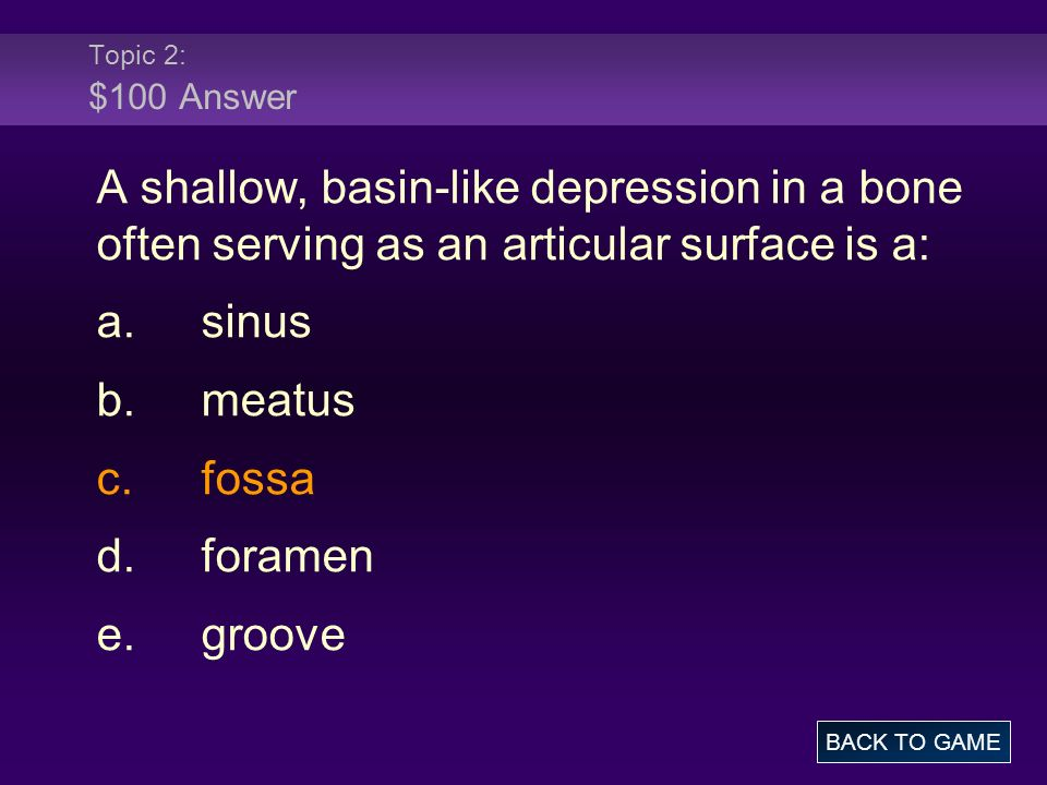 Topic 2: $100 Answer A shallow, basin-like depression in a bone often serving as an articular surface is a: a.sinus b.meatus c.fossa d.foramen e.groove BACK TO GAME