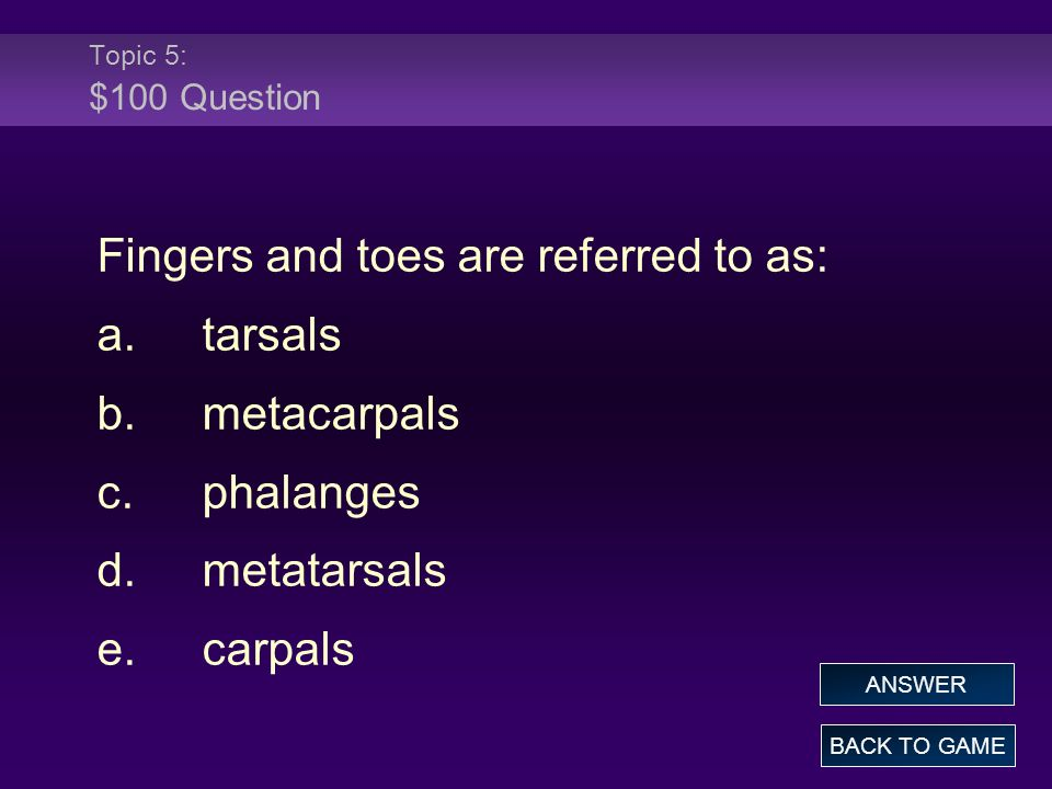 Topic 5: $100 Question Fingers and toes are referred to as: a.tarsals b.metacarpals c.phalanges d.metatarsals e.carpals BACK TO GAME ANSWER