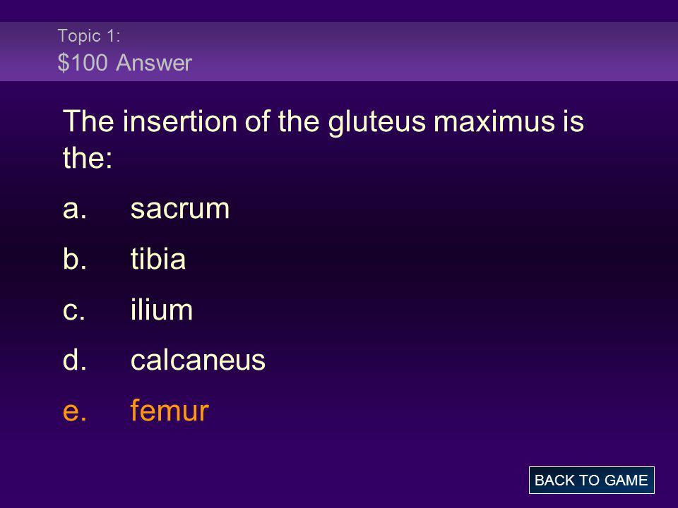 Topic 1: $100 Answer The insertion of the gluteus maximus is the: a.sacrum b.tibia c.ilium d.calcaneus e.femur BACK TO GAME