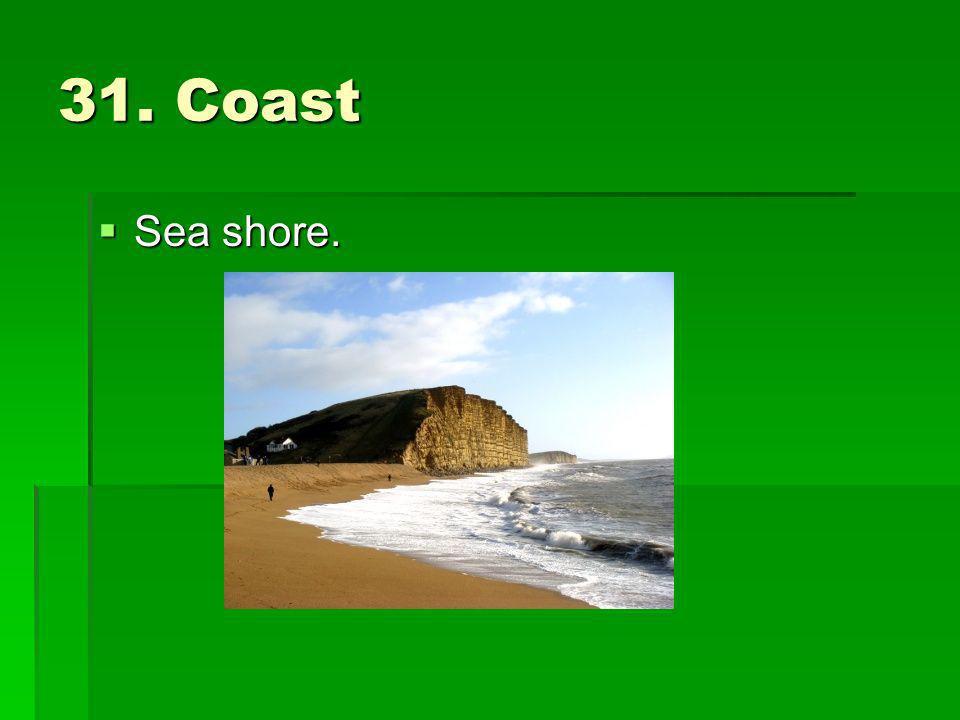 31. Coast Sea shore. Sea shore.