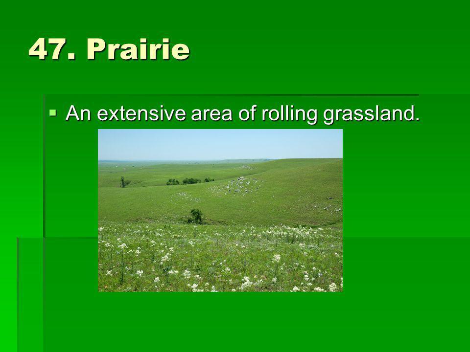 47. Prairie An extensive area of rolling grassland. An extensive area of rolling grassland.