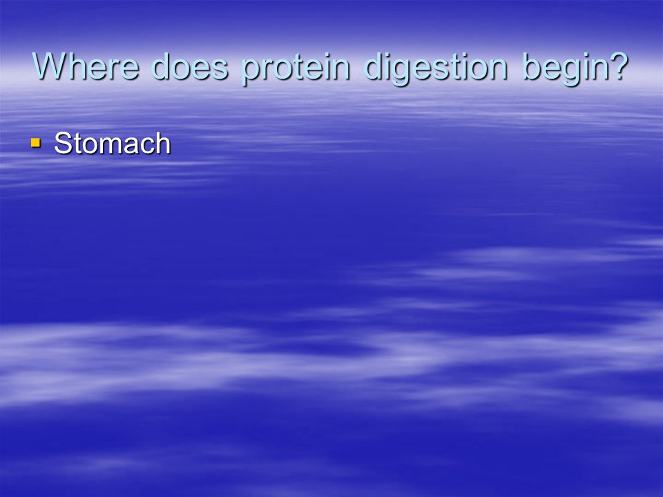 Where does protein digestion begin? Stomach Stomach