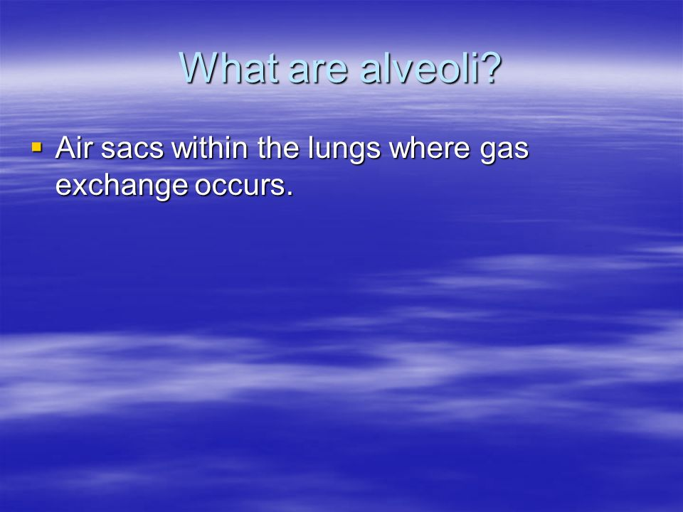 What are alveoli? Air sacs within the lungs where gas exchange occurs. Air sacs within the lungs where gas exchange occurs.