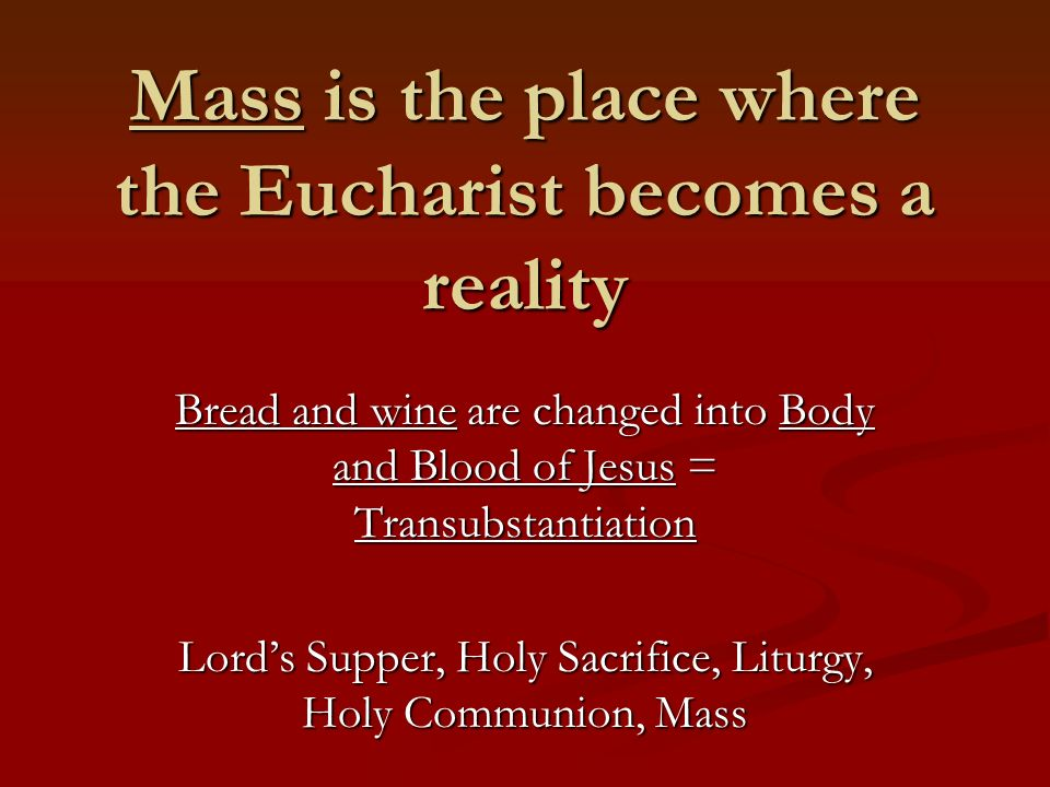 Minister of the Eucharist Jesus is the eternal High Priest who presides at the Mass through the Priest to offer the Eucharist Jesus is the eternal High Priest who presides at the Mass through the Priest to offer the Eucharist Can only be a Bishop or Priest Can only be a Bishop or Priest Receive power to consecrate bread and wine into Body and Blood through Sacrament of Holy Orders Receive power to consecrate bread and wine into Body and Blood through Sacrament of Holy Orders