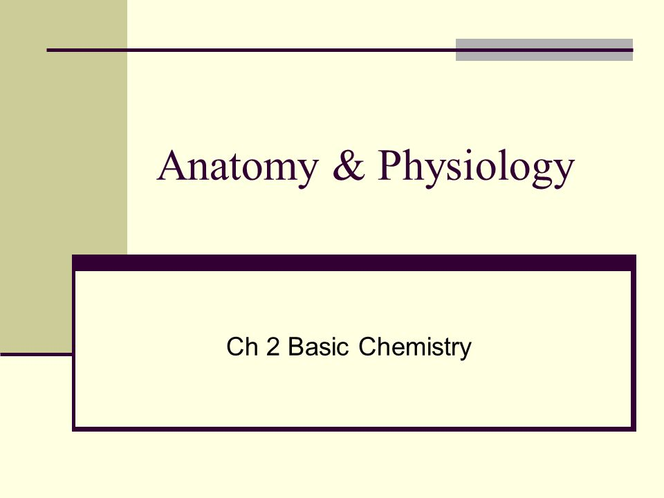 Anatomy & Physiology Ch 2 Basic Chemistry