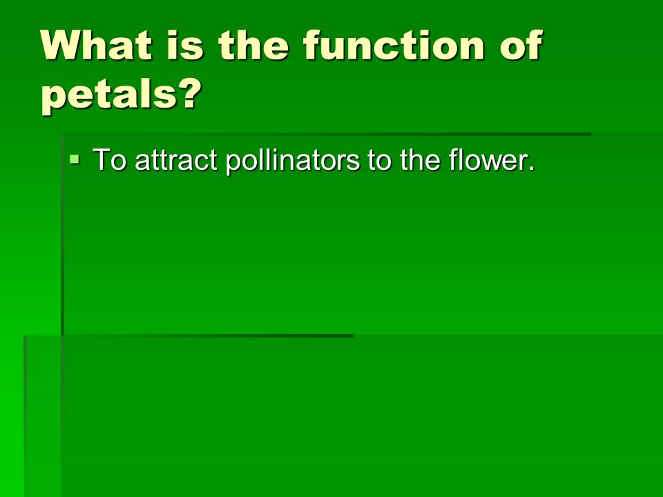 What is the function of petals? To attract pollinators to the flower. To attract pollinators to the flower.
