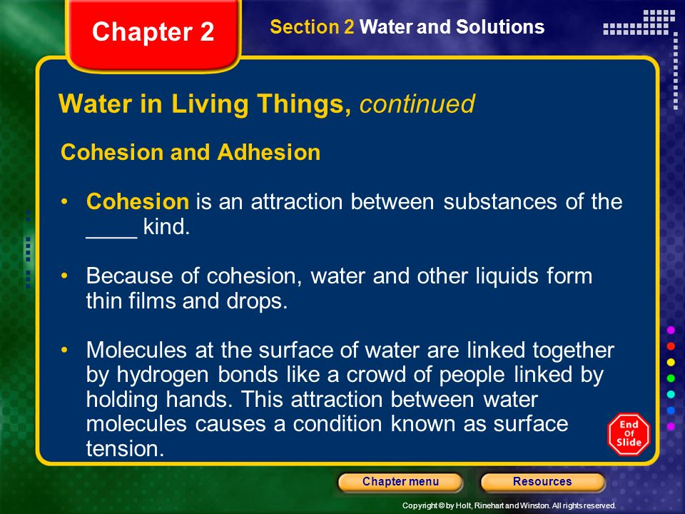 Copyright © by Holt, Rinehart and Winston. All rights reserved. ResourcesChapter menu Water in Living Things, continued Cohesion and Adhesion Cohesion
