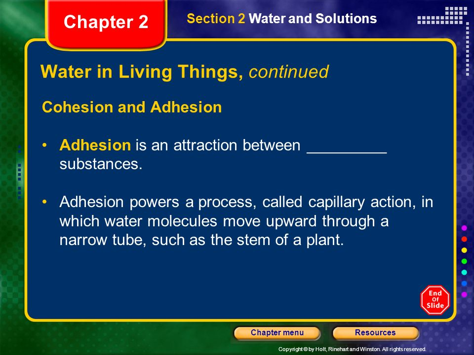 Copyright © by Holt, Rinehart and Winston. All rights reserved. ResourcesChapter menu Water in Living Things, continued Cohesion and Adhesion Adhesion