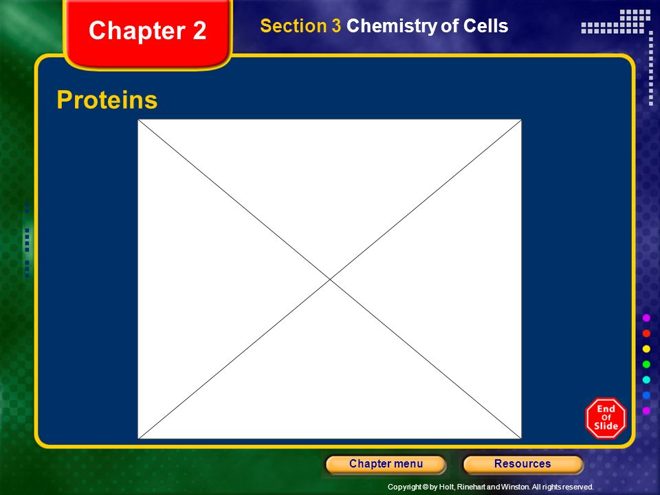 Copyright © by Holt, Rinehart and Winston. All rights reserved. ResourcesChapter menu Structure of Proteins Section 3 Chemistry of Cells Chapter 2