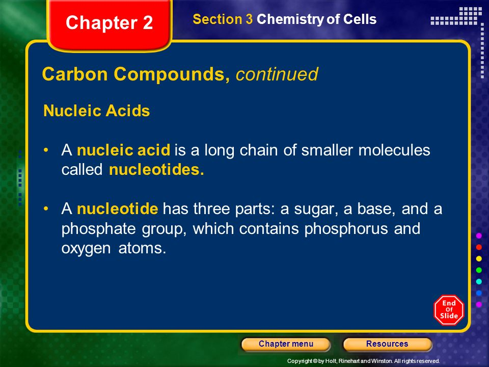 Copyright © by Holt, Rinehart and Winston. All rights reserved. ResourcesChapter menu Amino Acids Section 3 Chemistry of Cells Chapter 2