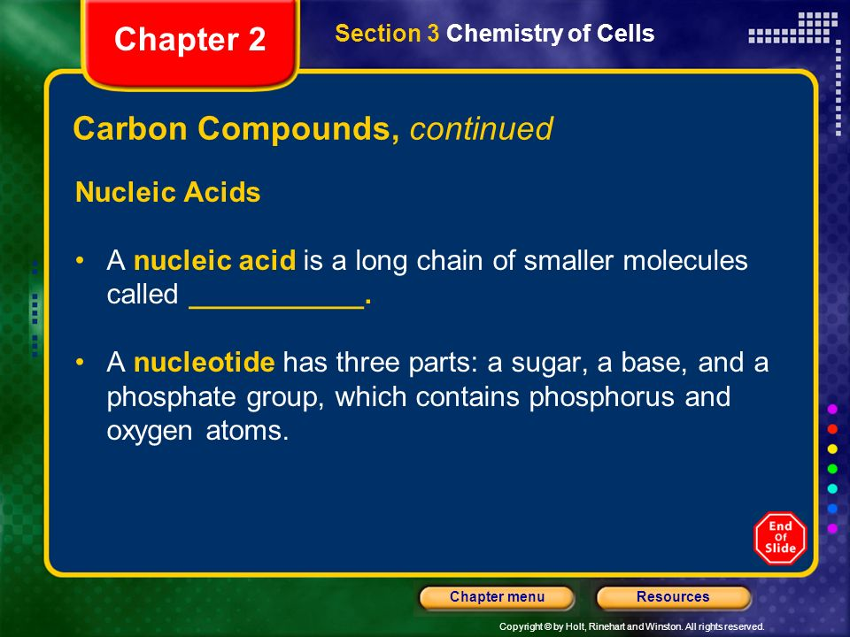Copyright © by Holt, Rinehart and Winston. All rights reserved. ResourcesChapter menu Carbon Compounds, continued Nucleic Acids A nucleic acid is a lo