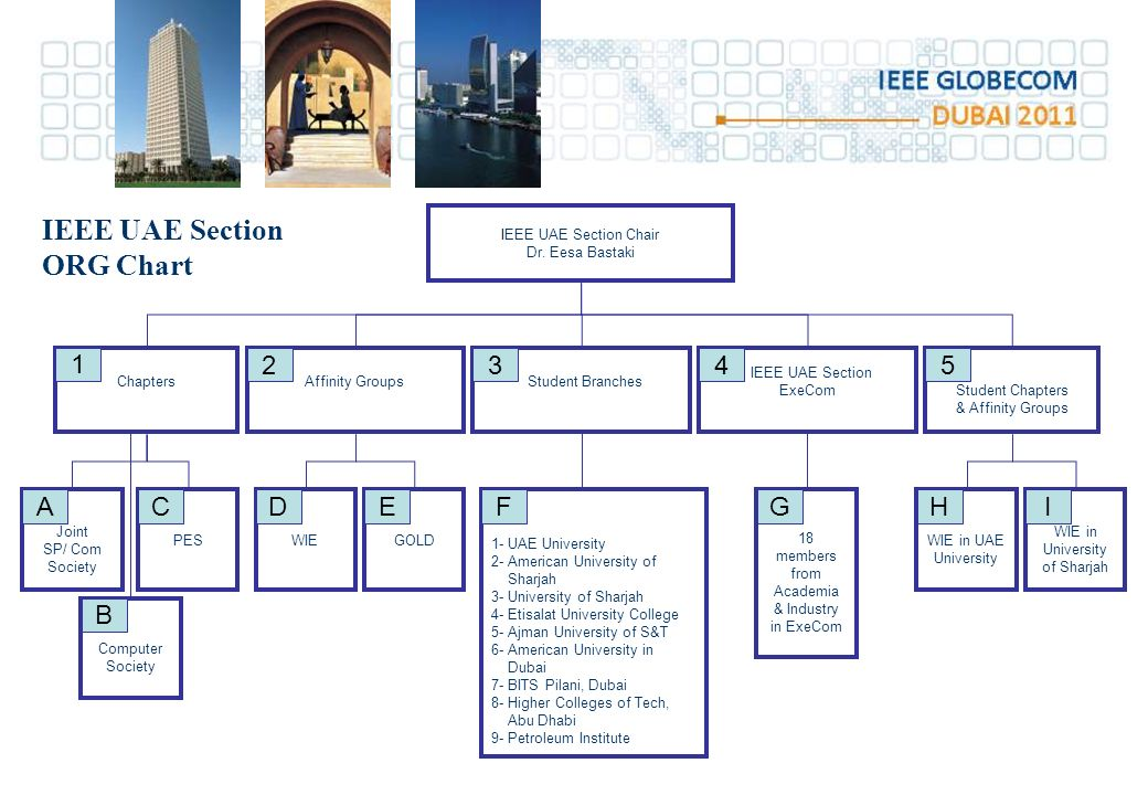 IEEE UAE Section Chair Dr.