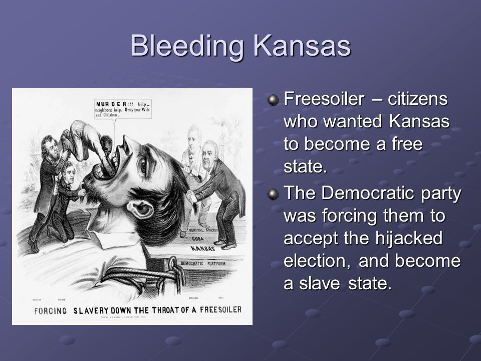 Bleeding Kansas Freesoiler – citizens who wanted Kansas to become a free state. The Democratic party was forcing them to accept the hijacked election,