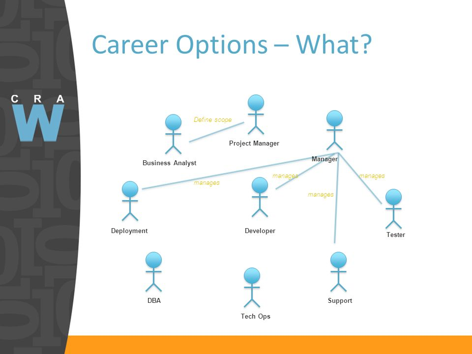 Career Options – What? Developer Tester Support Tech Ops Business Analyst Deployment DBA Project Manager Define scope Manager manages
