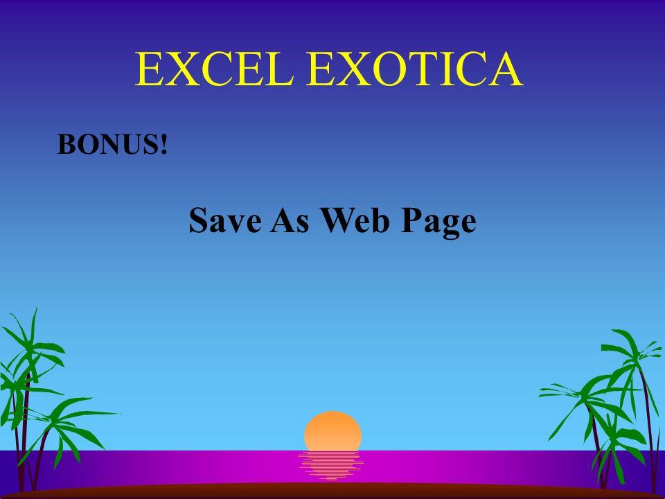 EXCEL EXOTICA BONUS! Save As Web Page