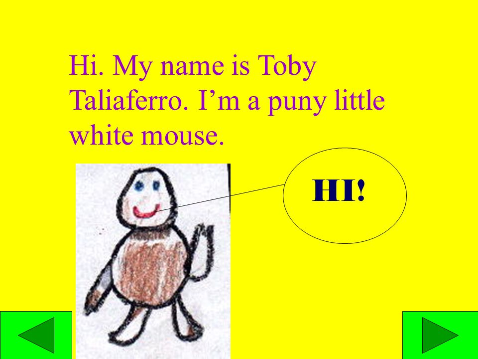 Hi. My name is Toby Taliaferro. Im a puny little white mouse. HI!