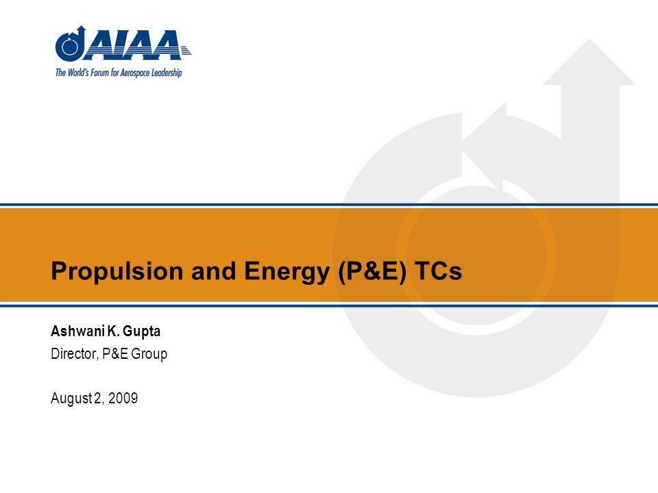 Propulsion and Energy (P&E) TCs Ashwani K. Gupta Director, P&E Group August 2, 2009