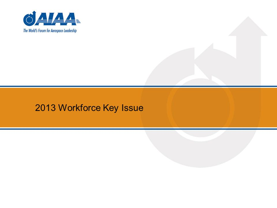2013 Workforce Key Issue