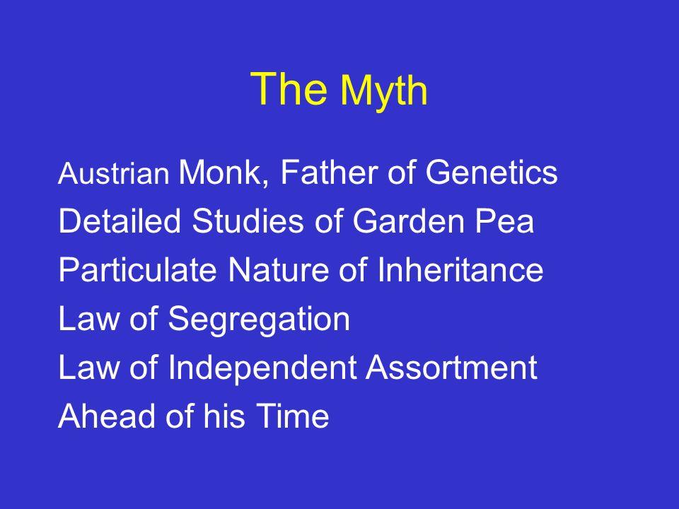 Who was Gregor Mendel.