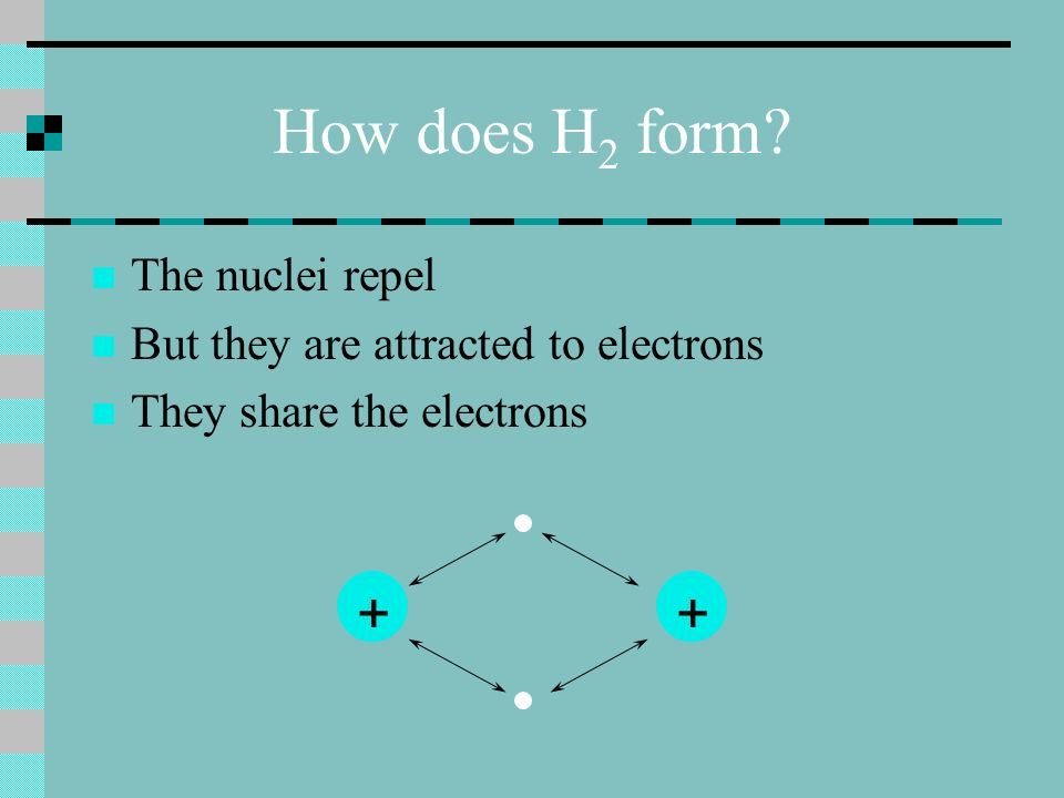 How does H 2 form ++ The nuclei repel But they are attracted to electrons They share the electrons