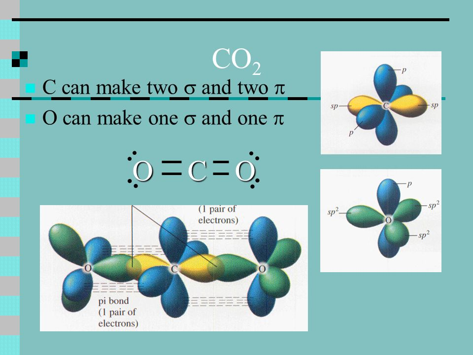 CO 2 C can make two and two O can make one and one COO